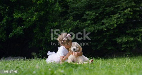 Cute toddler little two years old girl gives a kiss to a golden retriever puppy on a green widow in a woods. Concept of love for nature, protection of animals,innocence, fun, joy, carefree childhood.