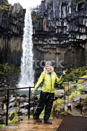 istock Cute woman at Svartifoss, Iceland 1171399324