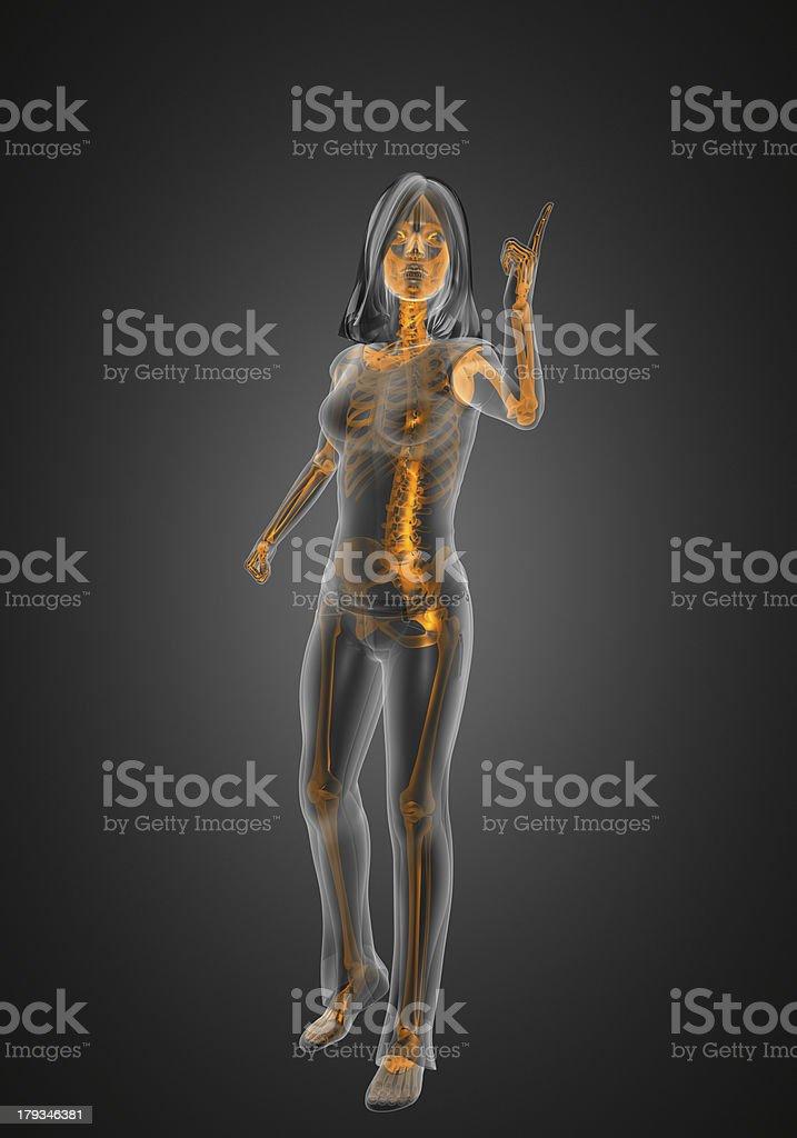 cute woman radiography royalty-free stock photo