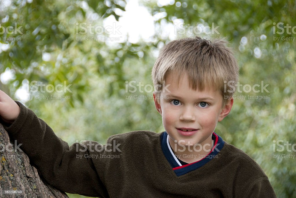 Cute Young Boy Sitting In A Tree royalty-free stock photo