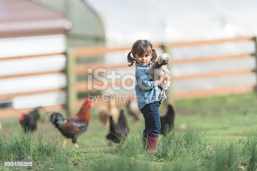Cute young ethnic girl walks around family farm carrying a live chicken