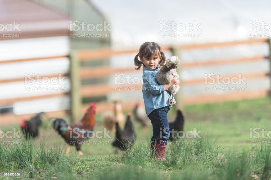 Süße junge Mädchen ethnischen Spaziergänge Bauernhof der Familie tragen ein live Huhn – Foto