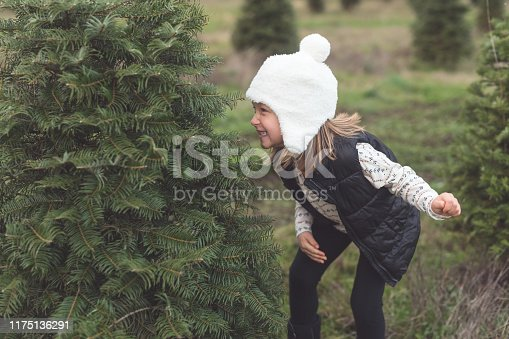 A cute preschool age girl poses with a Christmas tree just her size at a tree farm. She is ducked behind it and smiling at the camera.
