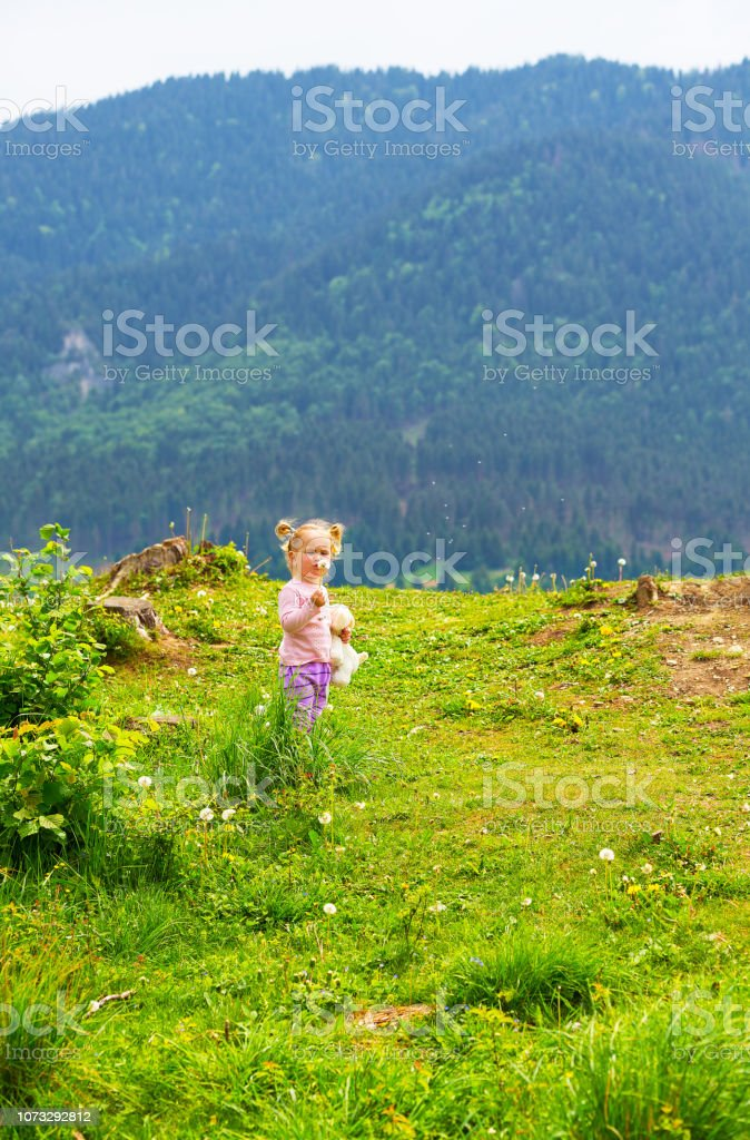 Cute young little girl blowing dandelion in sunny day. Beautiful small female child in pink shirt with ponytail holding plush toy blowing taraxacum seeds, green mountains and blue sky in background. stock photo