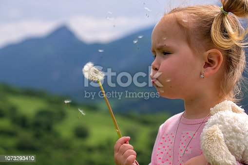 istock Cute young little girl blowing dandelion in sunny day. Beautiful small female child in pink shirt with ponytail holding plush toy blowing taraxacum seeds, green mountains and blue sky in background. 1073293410