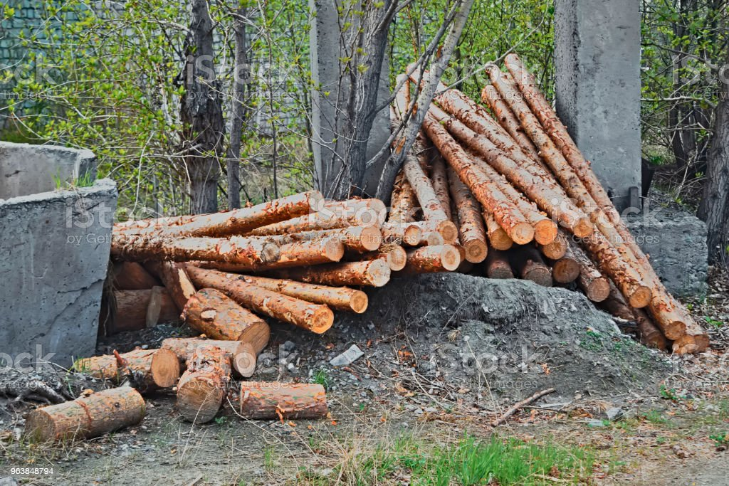 Cutted and stacked pine trees. - Royalty-free Backgrounds Stock Photo