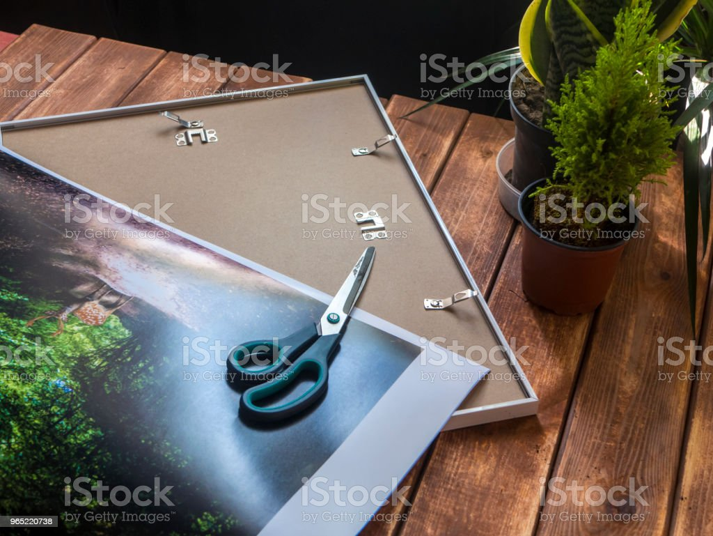 cutting a photo to put it into frame on a table royalty-free stock photo