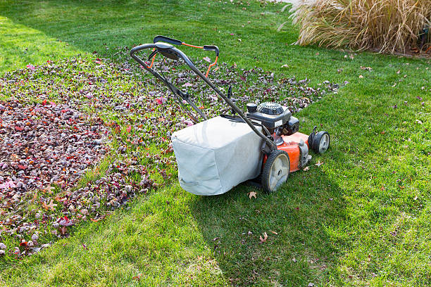 Cutting and bagging grass and leaves in the fall stock photo