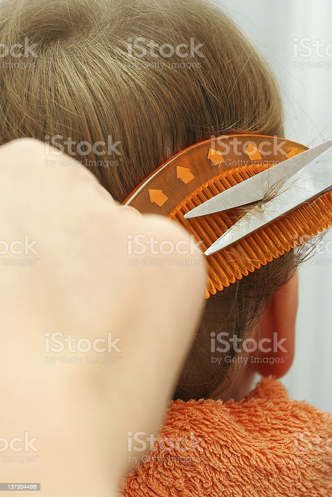 Cutting child's hair royalty-free stock photo