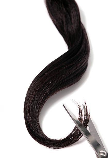 Cutting hair stock photo