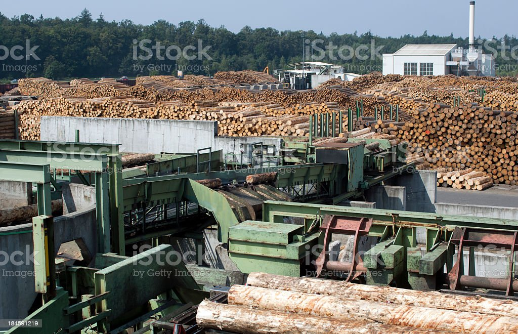 Cutting line in saw mill stock photo