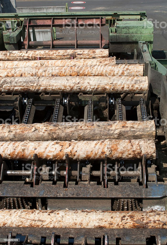 Cutting line in saw mill. stock photo