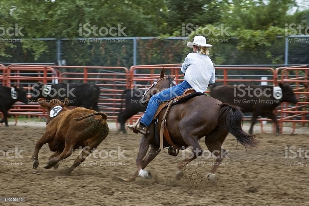 Cutting out Calf Number Four Panning and Motion Blur stock photo
