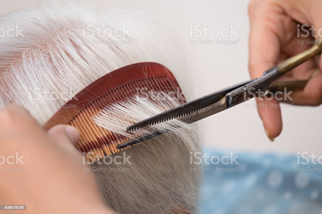 cutting senior woman's gray hair stock photo