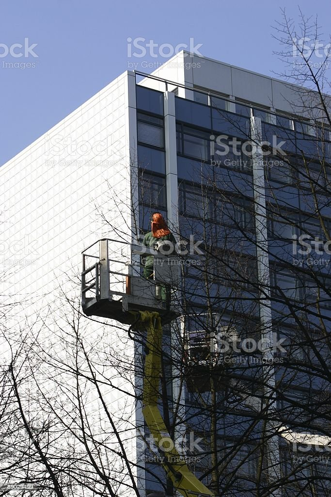 Cutting the trees royalty-free stock photo