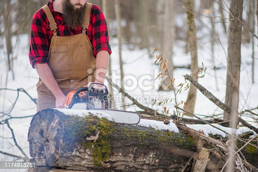 An attractive young lumberjack man is cutting through a log with his chainsaw while standing in a winter wood.