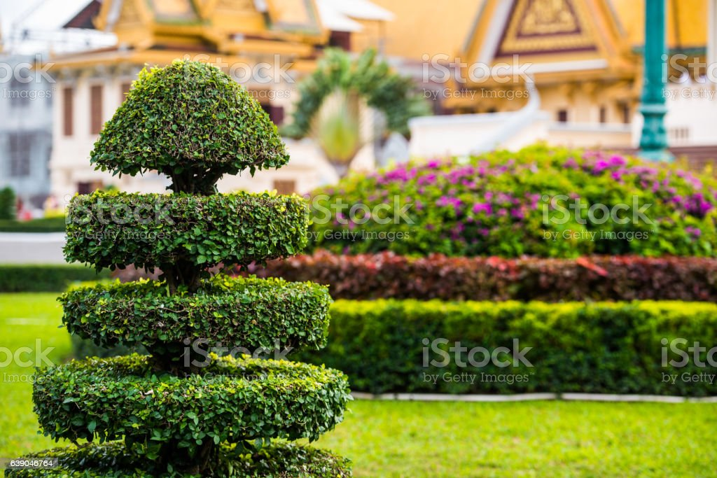 Cutting tree garden decoration at asian temple - Photo