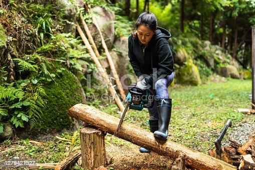 istock Cutting trees in forest with chainsaw 1279421327