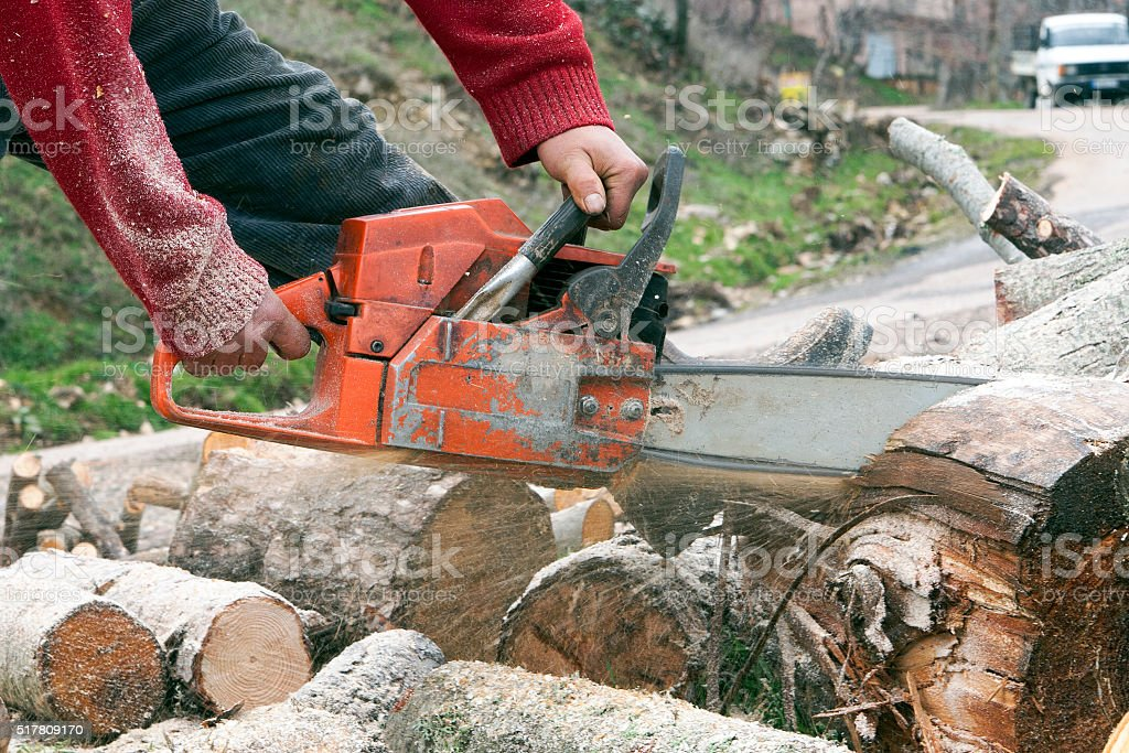 cutting trees with chainsaw stock photo