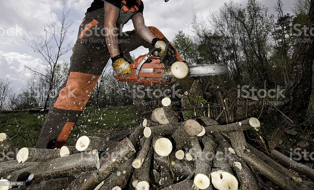 Cutting Wood With a Chainsaw stock photo