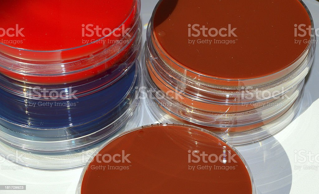 Cuture plates royalty-free stock photo