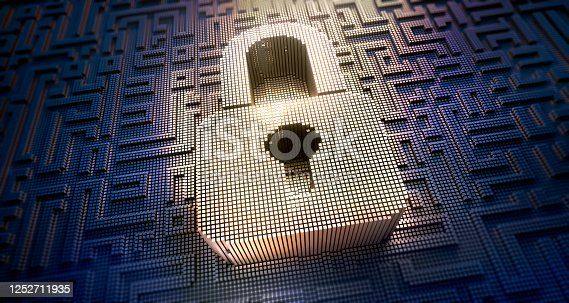 532351758 istock photo Cyber Security Concepts 1252711935