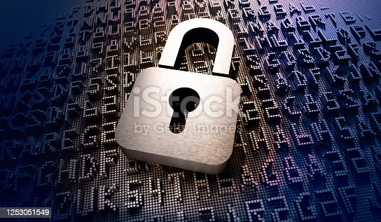 532351758 istock photo Cyber Security Concepts 1253051549