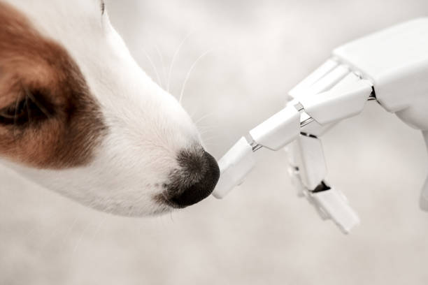 Cyborg or robot hand is holding his finger to a puppy sitting on the picture id947127906?b=1&k=6&m=947127906&s=612x612&w=0&h= 2pzca3qelthgdurb nedzl uxhyyk1figt6vy wsu0=