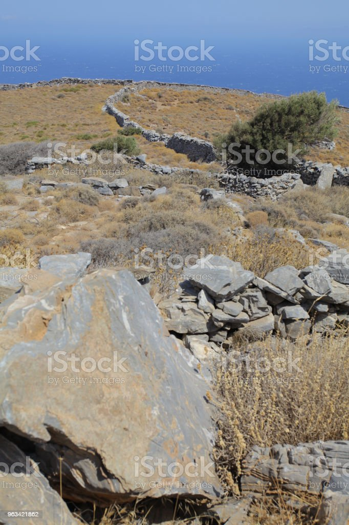 Infini de Cyclades - Photo de Arbre libre de droits