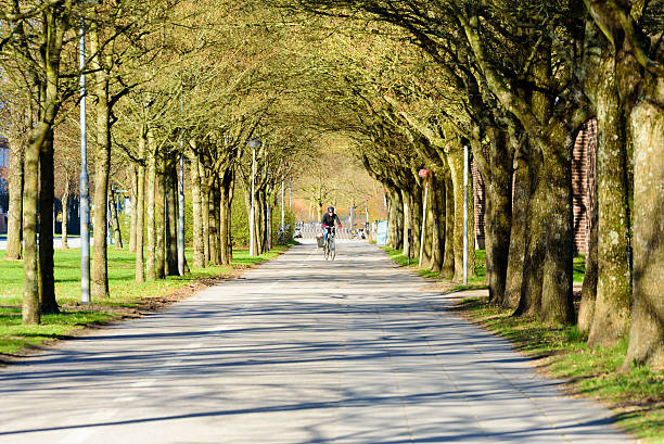 cycle in alleyway - lund stock photos and pictures