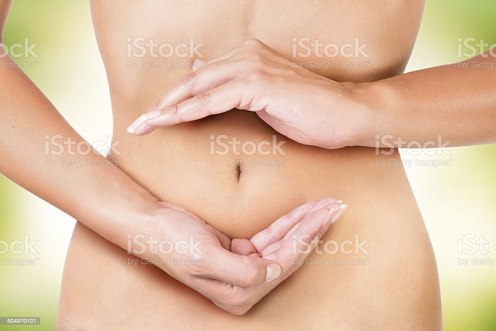 cycle inside the female body, circle of digestion, and menstruation stock photo