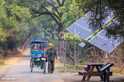Cycle rickshaw walking in Keoladeo Ghana National Park in Bharatpur, Rajasthan, India. The park was declared a protected sanctuary in 1971 and it is also a World Heritage Site.