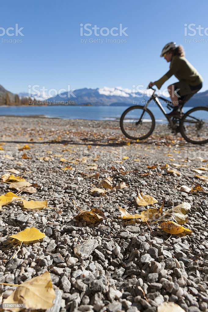 Cycling along the shore royalty-free stock photo