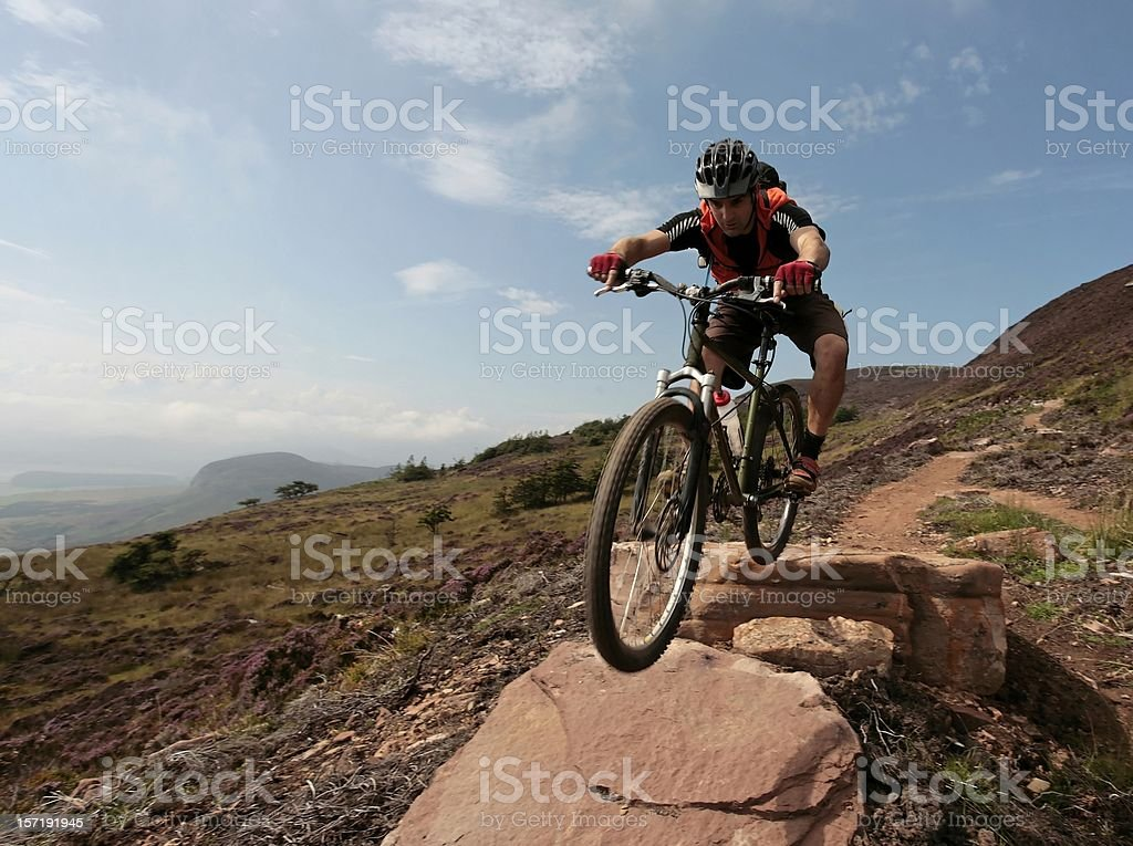 Cycling in the north royalty-free stock photo