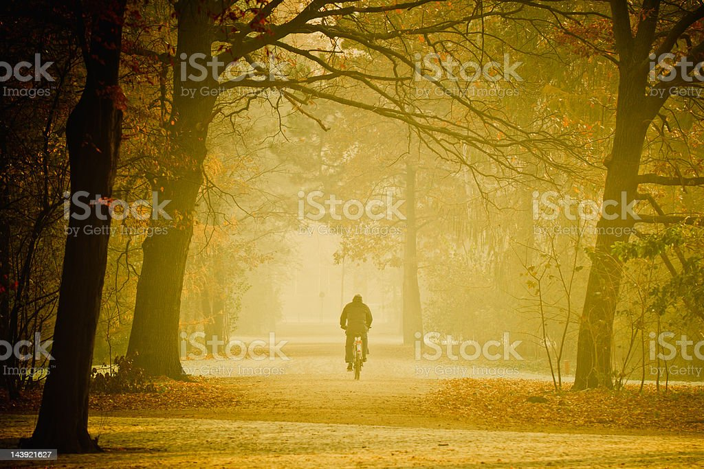 Cycling Throught the Fog in Country Road royalty-free stock photo