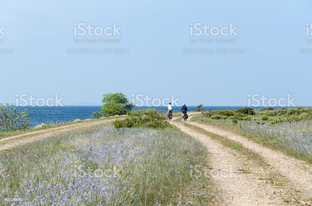 Cycling tourists at a beautiful coastal road stock photo