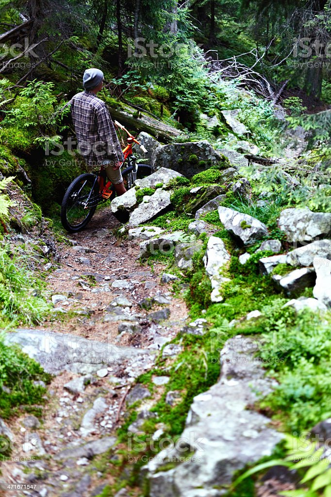 Cyclist at mountain forest royalty-free stock photo