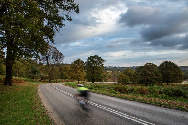 cyclist in beautiful richmond park landscape in autumn - richmond park stock photos and pictures