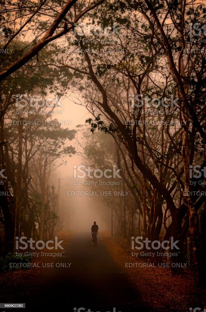 A cyclist on a foggy winter morning stock photo