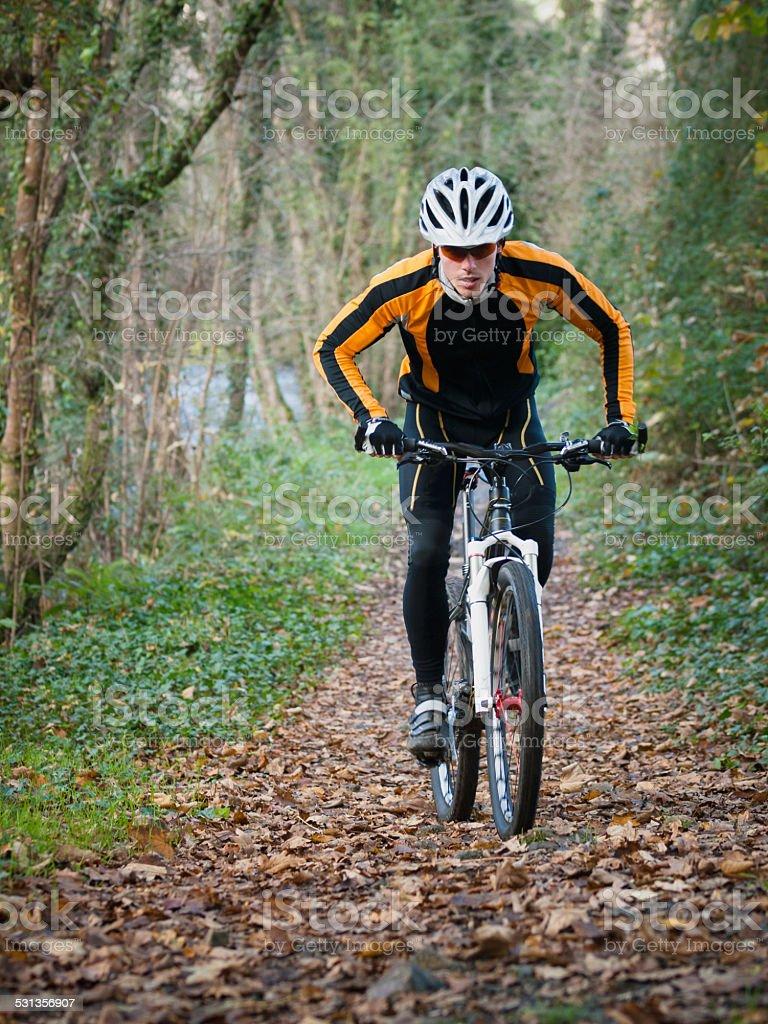 Ciclista en bicicleta de montaña en el bosque ciclismo - foto de stock