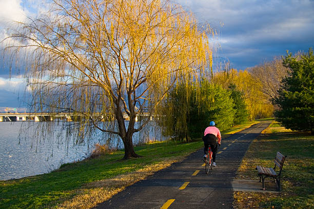 Cyclist pedaling down bike trail next to the Potomac at dawn stock photo