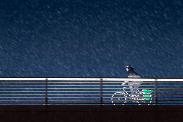 radfahrer-fahrten in der nacht und schneefall - radwege deutschland stock-fotos und bilder