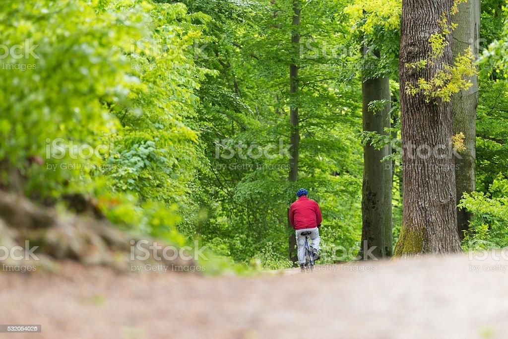 Radfahrer Reiten Fahrrad auf den Wald. Lizenzfreies stock-foto