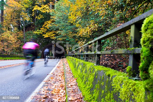 Cyclists rapidly moving toward an arched tunnel, carved into the rock, in the autumn road, surrounded by trees and framed yellowed fallen withered leaves, covered with moss along the fence of the bridge road.