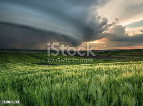 istock Cyclone on the field. Beautiful natural landscape in the summer time 903874014