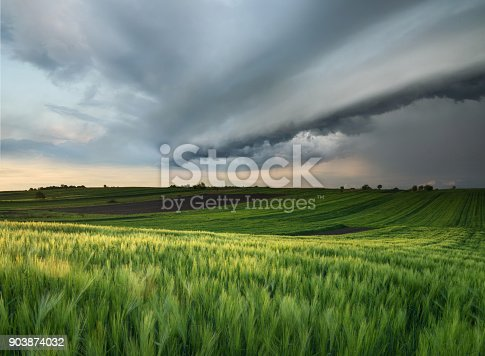 istock Cyclone on the field. Beautiful natural landscape in the summer time 903874032