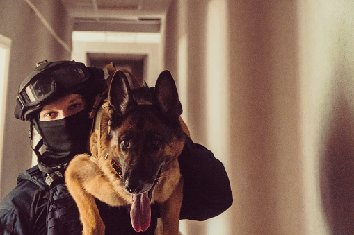 Cynologist Special Forces With A Trained Dog Stock Photo - Download Image  Now
