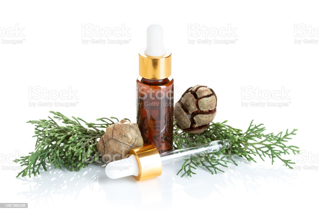 Cypress essential oil isolated on white background stock photo