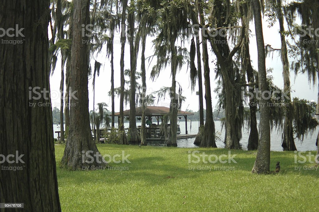 Cypress Lake stock photo