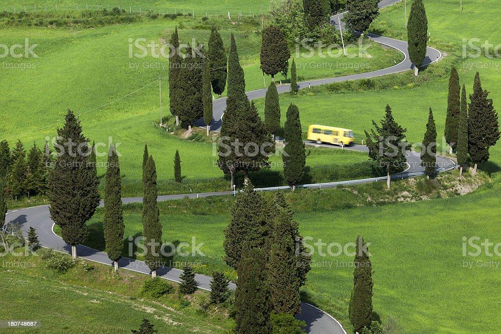 Cypress foderato strada tortuosa in Toscana, Italia - foto stock